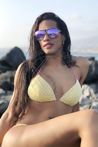 Veronica venezuelana ROMA 3511091897